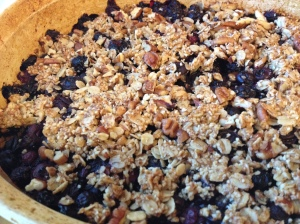 Vegan Blueberry Crisp!